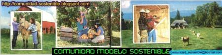 Mundo sostenible comunidad Modelo
